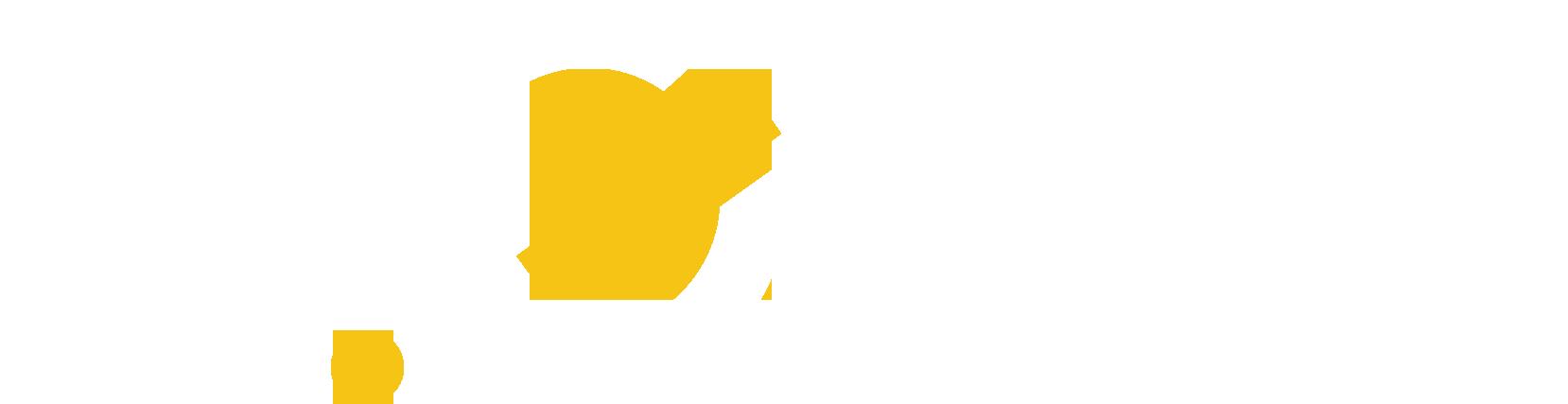 Z1one